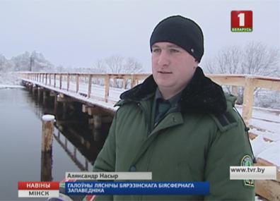 Новый мост на территории Березинского биосферного заповедника Новы мост на тэрыторыі Бярэзінскага біясфернага запаведніка