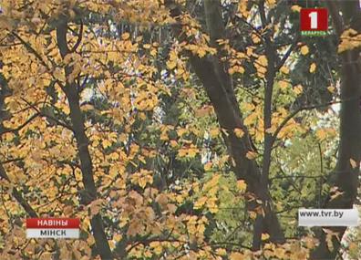 Осенняя погода добавила работы коммунальщикам Восеньскае надвор'е дадало работы камунальшчыкам
