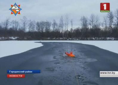 Городокские спасатели освободили лебедя из ледяного плена Гарадоцкія ратавальнікі вызвалілі лебедзя з ледзянога палону