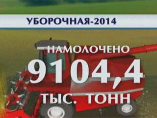 Аграрии намолотили более 9 миллионов 100 тысяч тонн нового урожая Аграрыі намалацілі больш як 9 мільёнаў 100 тысяч тон новага ўраджаю