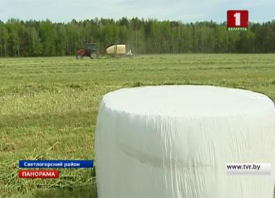 Беларусь остается одним из лидеров в производстве продуктов питания в мире Беларусь застаецца адным з лідараў у вытворчасці прадуктаў харчавання ў свеце