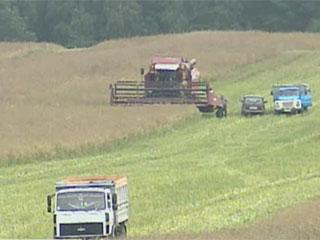 Аграрии области завершают второй укос трав Аграрыі вобласці завяршаюць другі ўкос траў