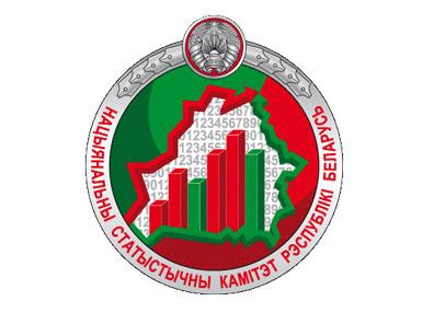 Онлайн-конференция с Председателем Национального статистического комитета Инной Медведевой