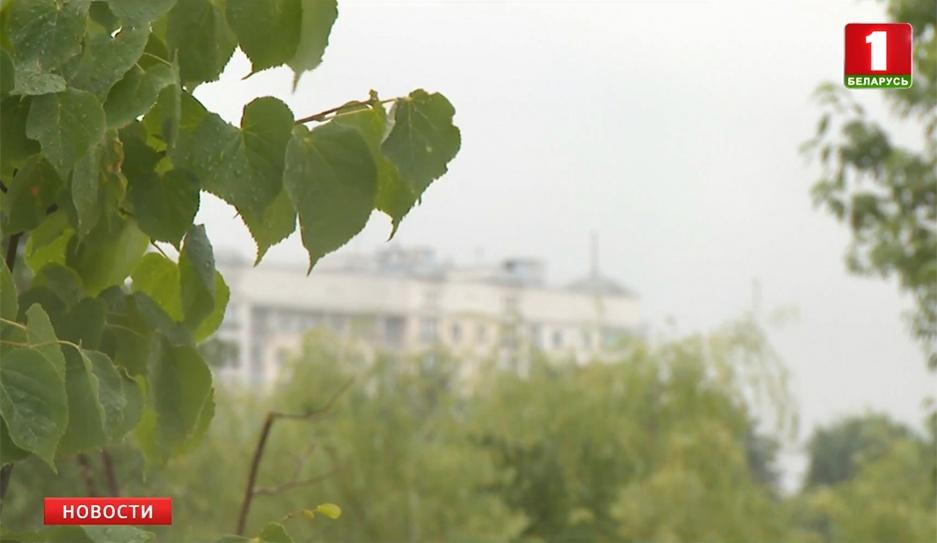 Синоптики прогнозируют сильные дожди и грозы Сіноптыкі прагназуюць моцныя дажджы і навальніцы