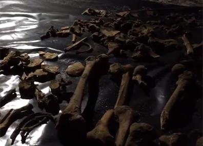 В Гродно рабочие обнаружили останки солдат на месте строящегося торгово-развлекательного центра