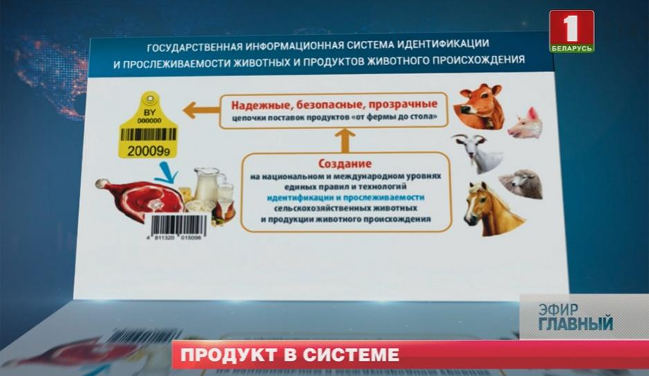 AITS-Ветбезопасность прослеживает продукты животного происхождения AITS-Ветбяспека прасочвае прадукты жывёльнага паходжання AITS-Vetbezopasnost traces animal products