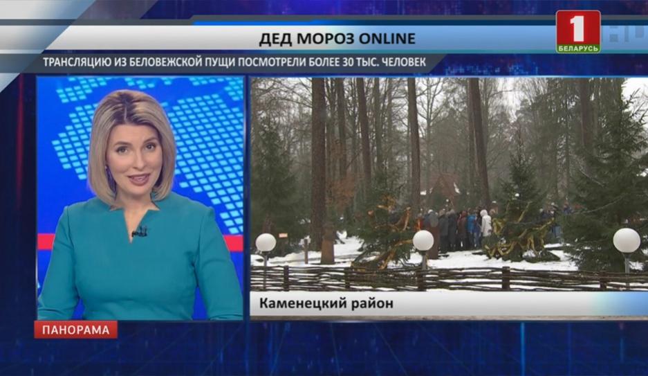 Деда Мороза online  посмотрели более 30 тысяч человек Дзеда Мароза online  паглядзелі больш як 30 тысяч чалавек