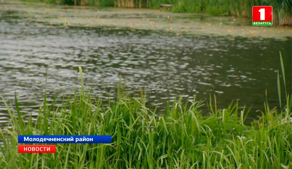 12-летняя девочка погибла в Молодечненском районе  12-гадовая дзяўчынка загінула ў Маладзечанскім раёне