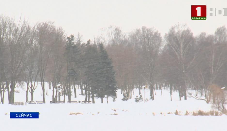 Белорусов в выходные ожидает снег и порывистый ветер до 14 метров в секунду  Беларусаў у выхадныя чакае снег і парывісты вецер да 14 метраў за секунду