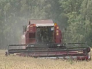 Миллион тонн у Витебской области Мільён тон у Віцебскай вобласці