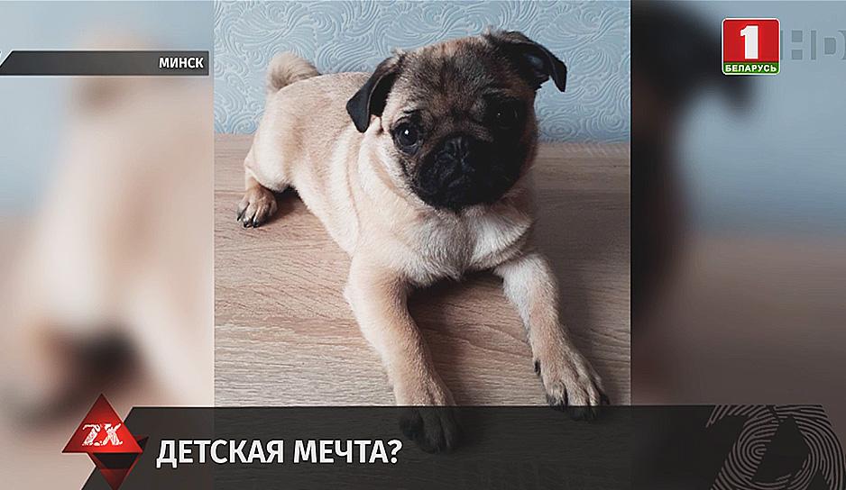 Зона Х. Утренний выпуск (04.06.2020)
