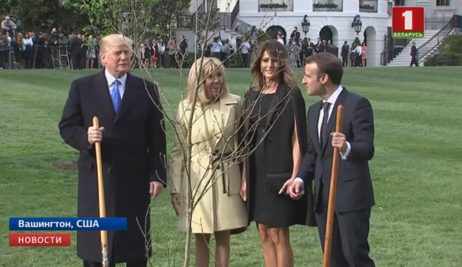 Эмануэль Макрон пообещал подарить Дональду Трампу новый дуб, взамен погибшего  Эмануэль Макрон паабяцаў падарыць Дональду Трампу новы дуб, наўзамен загінуўшага