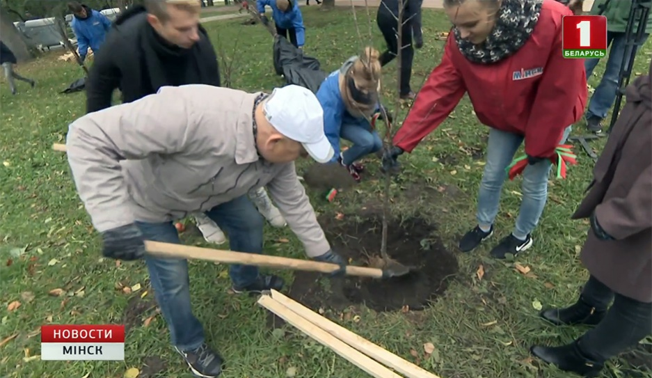100 яблоневых саженцев высадили в парке Победы 100 яблыневых саджанцаў высадзілі ў парку Перамогі