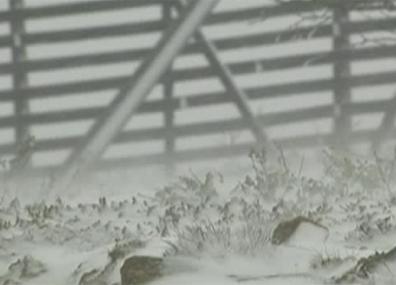 Летний шторм обрушился на северные регионы Финляндии Летні шторм абрынуўся на паўночныя рэгіёны Фінляндыі