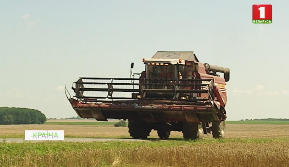 Аграрии страны намолотили 5 миллионов тонн зерна Аграрыі краіны намалацілі 5 мільёнаў тон збожжа