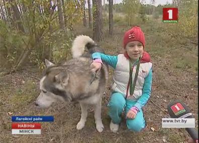 В Минской области прошли соревнования между собаками У Мінскай вобласці прайшлі спаборніцтвы паміж сабакамі