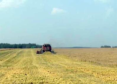 Пятая область-миллионер  появилась в Беларуси Пятая вобласць-мільянер  з'явілася ў Беларусі Belarus' Mogilev region harvests 1 million tons of grain