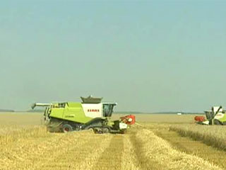 Минская область собрала 2 миллиона тонн зерна нового урожая Мінская вобласць сабрала 2 мільёны тон збожжа новага ўраджаю