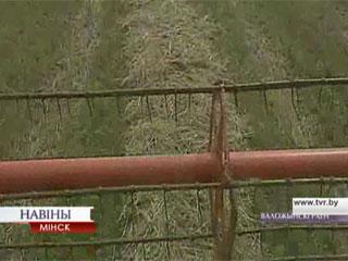 Уборка зерновых переместилась на частные подворья Уборка збожжавых перамясцілася на прыватныя падворкі