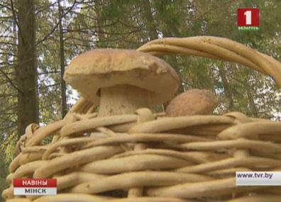 В Минской области участились случаи отравления грибами У Мінскай вобласці пачасціліся выпадкі атручвання грыбамі