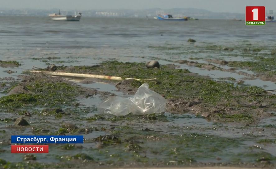 В Евросоюзе окончательно утвердили запрет на одноразовый пластик У Еўрасаюзе канчаткова зацвердзілі забарону на аднаразовы пластык