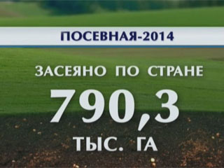 Посевная кампания в Беларуси продолжается Пасяўная кампанія ў Беларусі працягваецца