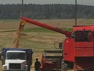 В закромах региона - первый миллион тонн зерна У засеках рэгіёну - першы мільён тон збожжа