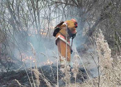 Весенние палы травы в Беларуси стали причиной травмирования двух человек