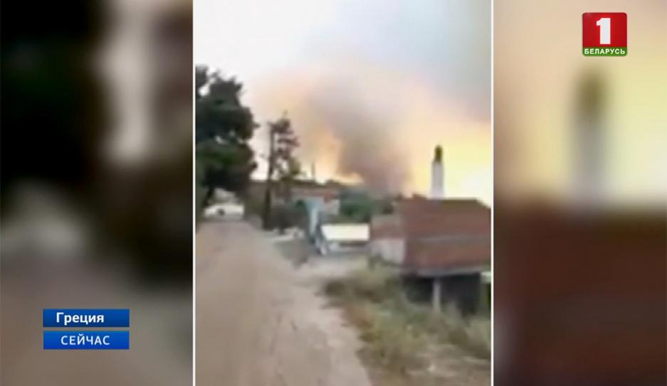 Лесной пожар на греческом острове Эвбея локализован