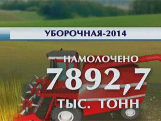 К 8 миллионам приблизились белорусские аграрии Да 8 мільёнаў наблізіліся беларускія аграрыі Belarusian farmers harvest almost 8 million tons of grain
