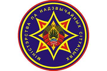 Онлайн-конференция с заместителем  начальника  управления надзора и профилактики МЧС