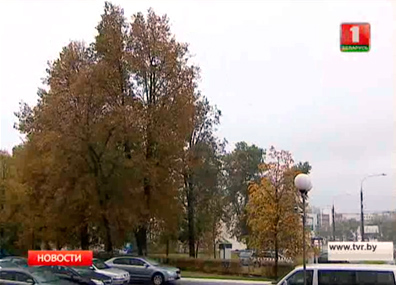 Дожди и порывистый ветер ожидаются в ближайшие  дни в Беларуси Дажджы і парывісты вецер чакаюцца ў найбліжэйшыя  дні ў Беларусі