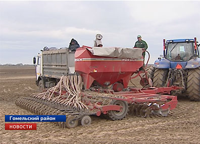 К посеву кукурузы приступили белорусские аграрии Сяўбу кукурузы распачалі беларускія аграрыі