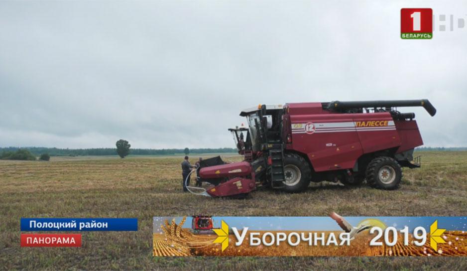 Аграрии Витебской области мобилизуют силы, чтобы собрать урожай с минимальными потерями