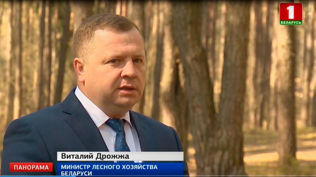 Виталий Дрожжа, Министр лесного хозяйства Беларуси