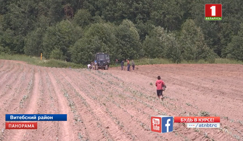 Экстремальные погодные условия вносят изменения в работу аграриев