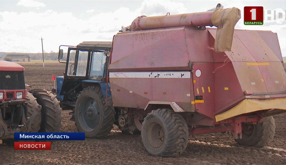 Сельхозорганизации Беларуси приближаются к финишу сева ранних яровых и зернобобовых культур.jpg