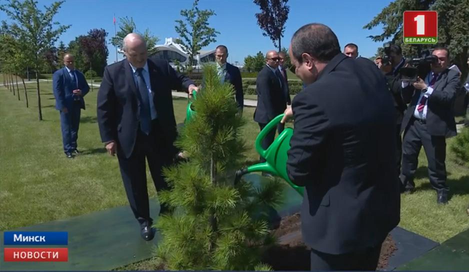 Александр Лукашенко вместе со своим коллегой из Египта высадили дерево на Аллее почетных гостей