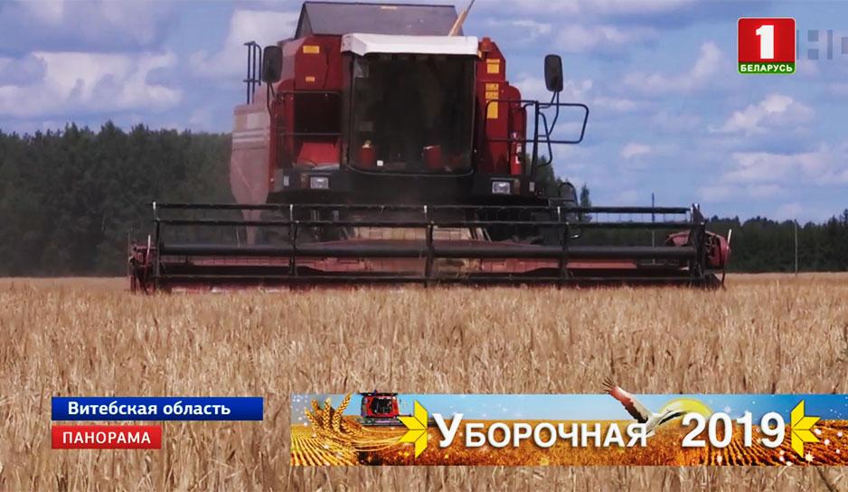 В Беларуси намолочено 680 тысяч тонн зерна.jpg