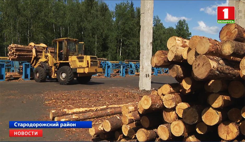 Эффективное использование лесных ресурсов обсуждали сегодня во Дворце Независимости