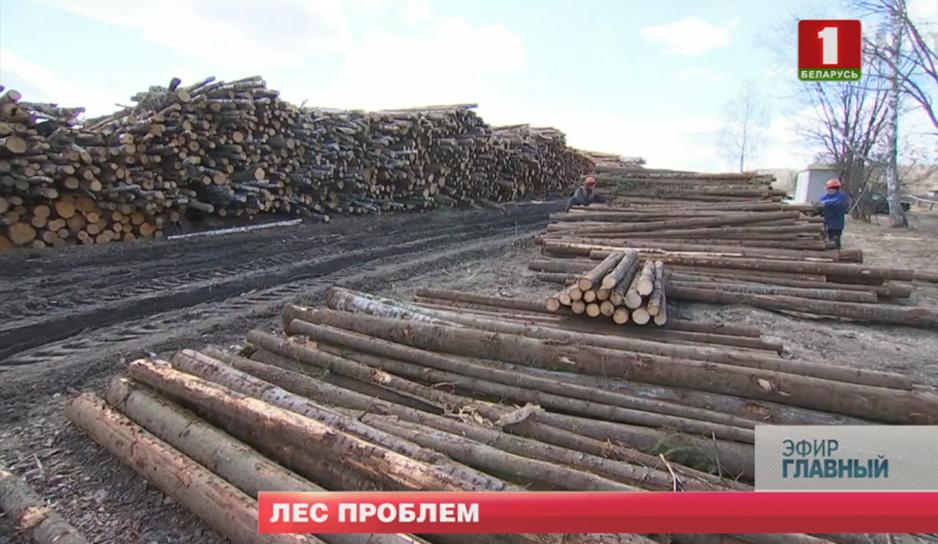 Миллионы кубометров леса лежат на складах