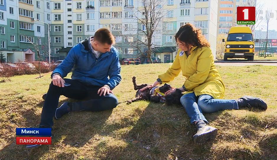 Собачья жизнь, или как пес по кличке Черныш стал героем соцсетей.jpg