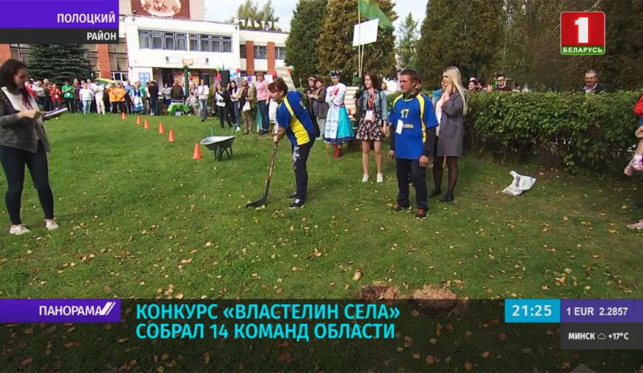 "Конкурс ""Властелин села"" собрал 14 команд области"