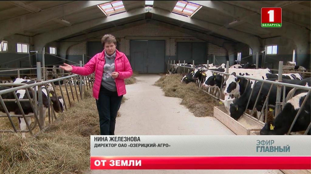 """Нина Железнова, директор ОАО """"Озерицкий-Агро"""""""