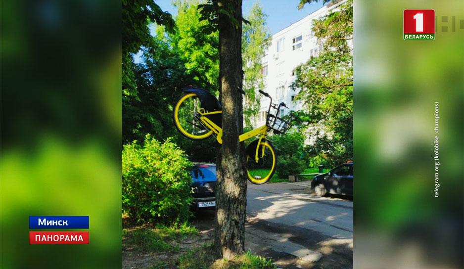 """Обвиняемого в краже велосипеда """"Колобайк"""" суд постановил арестовать на два месяца"""