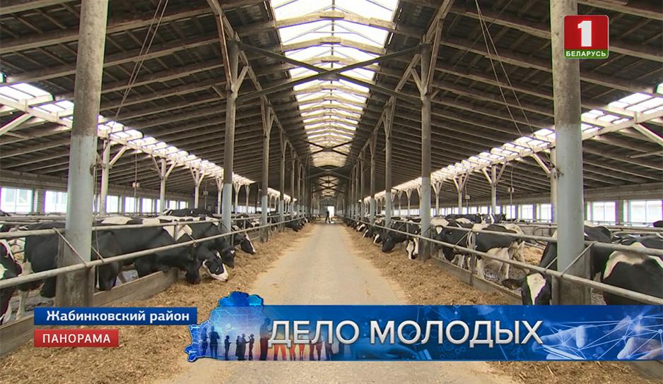 Сегодня в сельском хозяйстве деньги - это молоко
