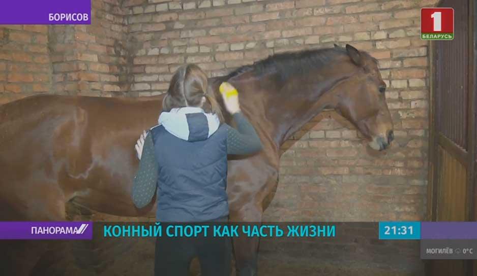 Конная школа В Борисове