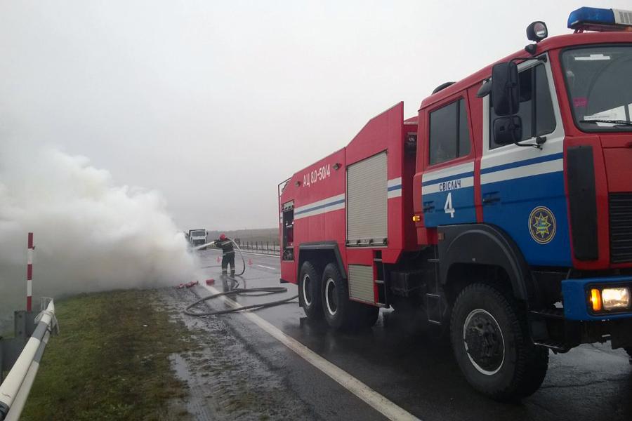 горит-8