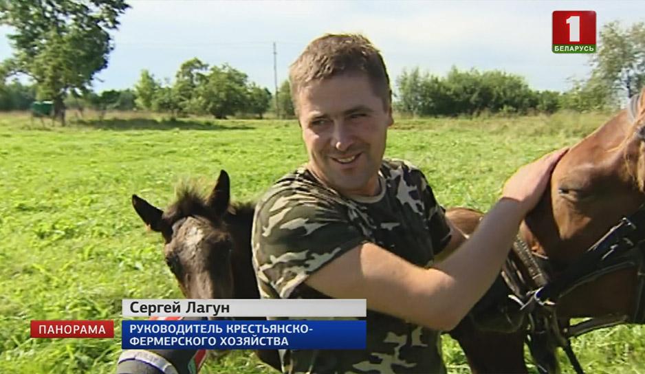 Фермер сделал ставку на животноводство, разведение лошадей. Мечтает об агроусадьбе