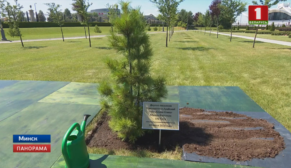 каждый мировой лидер, впервые бывая в стране, высаживает здесь дерево